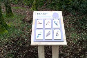Sentier d'interprétation de Stang Luzigou, les oiseaux forestiers