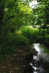 Plonéis rivière Goyen