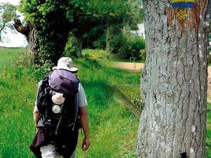 Pélerin sur le chemin de Saint Jacques de Compostelle entre Douarnenez et Quimper