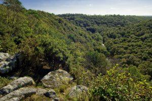 Les gorges du Stangala sur la commune d'Ergué Gabéric, Finistère, Bretagne