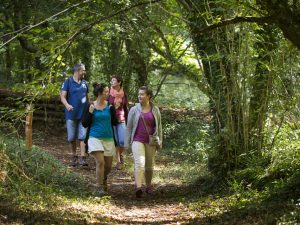 Randonnée pédestre en famille en pays de Quimper