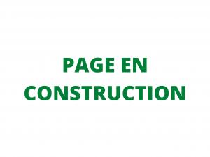 page-en-constructionpage-en-construction